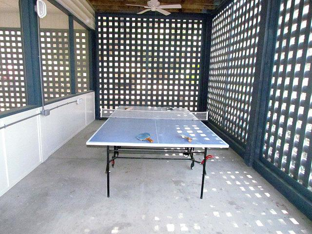 Downstairs screened area with ping pong table