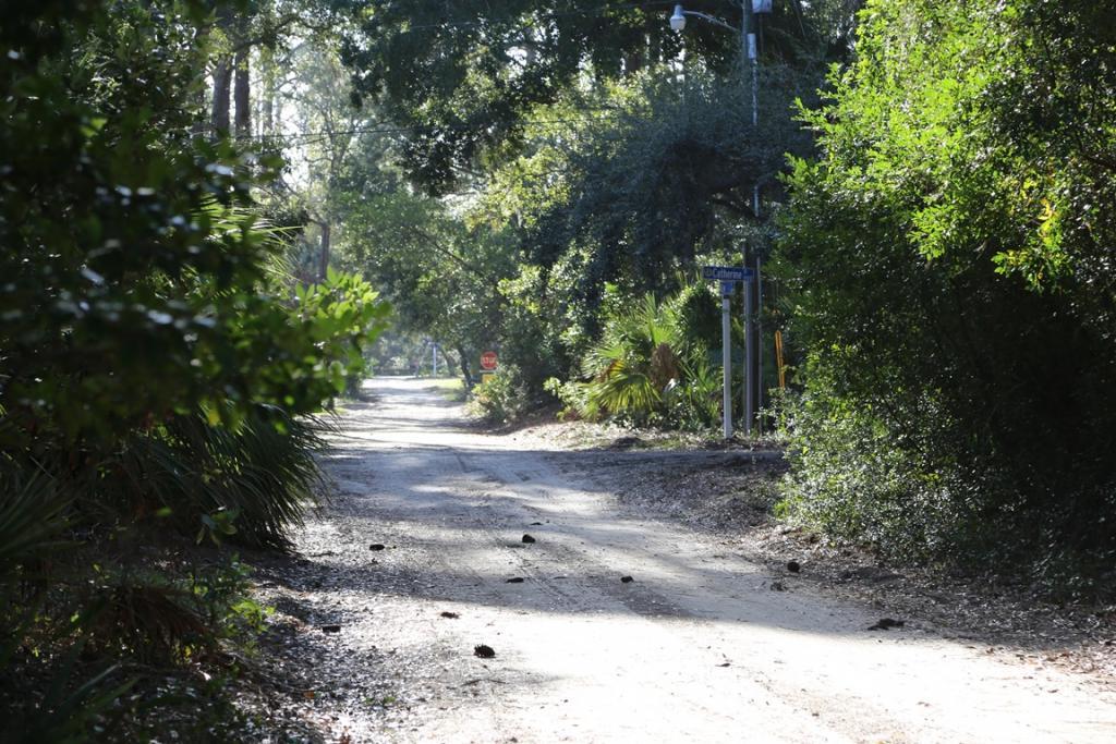 Quiet Dirt Street