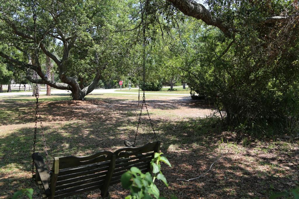 Swing in side yard under oak tree