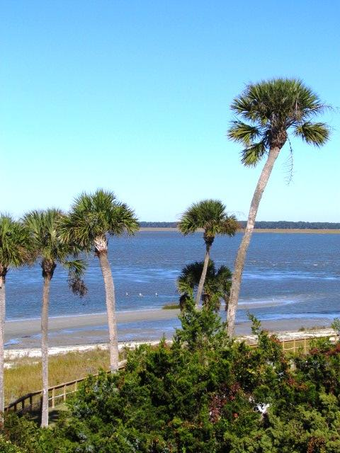 View of St. Helena Sound